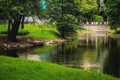 在公园的雨 库存照片