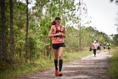 在公园的马拉松适合的人民连续种族 库存图片