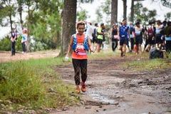 在公园的马拉松适合的人民连续种族 库存照片
