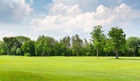 在公园空白夏天的结构树的云彩 库存照片