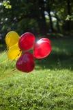 在公园背景的气球  库存图片