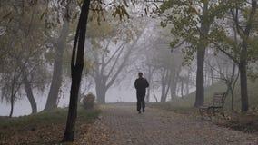 在公园跑的人在有雾的秋天早晨 股票录像