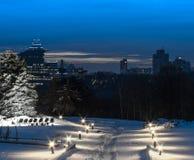 在公园路的晚上有光的 免版税库存图片