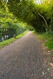 在公园远足足迹的步行道路在水道在Woking,萨里 免版税库存照片
