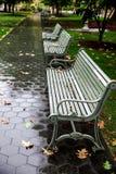 在公园长椅的秋叶 库存图片