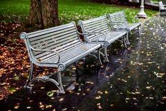 在公园长椅的秋叶 免版税库存图片