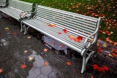 在公园长椅的秋叶 库存照片