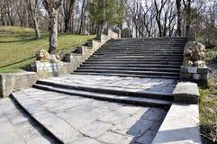 楼梯在公园 免版税图库摄影