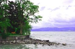 在公园附近的长凳湖 库存图片