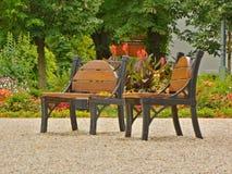 在公园,春天寒冷的背景的长凳 库存照片