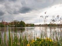在公园紧贴的City湖 库存照片