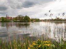 在公园紧贴的City湖 图库摄影