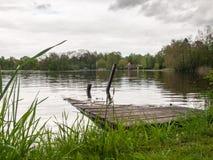 在公园紧贴的City湖 免版税库存图片
