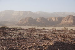 在公园Timna的山 图库摄影