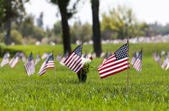 在公墓的美国旗子 库存照片