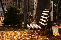 在公墓的长木凳 免版税库存图片