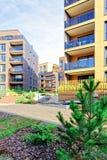 在公寓居民住房现代建筑复合体的杉树  库存照片