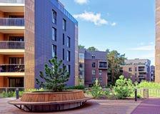 在公寓居民现代建筑复合体的杉树  免版税库存图片
