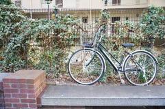 在公寓的绿色自行车 图库摄影