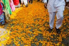 在公平普斯赫卡尔的骆驼,拉贾斯坦,印度的万寿菊花 库存照片
