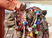 在公平的Pushkar的装饰骆驼 库存图片