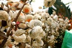 在公平的surajkund的Ikebana 图库摄影