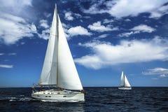 在公海运输有白色风帆的游艇 航行 乘快艇 免版税库存图片