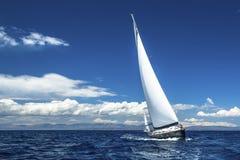 在公海运输有白色风帆的游艇 豪华小船 免版税库存图片
