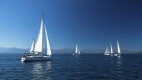 在公海运输有白色风帆的游艇 免版税图库摄影