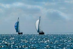在公海运输有白色风帆的游艇 免版税库存照片