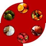 在六个圈子里面的新鲜水果 库存图片