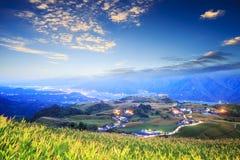 在六十座石山,富里乡,花莲, Ta的橙色黄花菜花 库存照片
