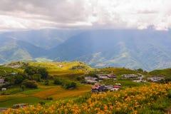 在六十斯通山的黄花菜花 免版税库存照片