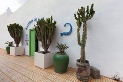 在兰萨罗特岛海岛上的传统商店 免版税库存图片