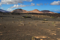 在兰萨罗特岛海岛,加那利群岛,西班牙的火山的山 库存照片