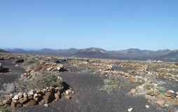 风景在兰萨罗特岛 库存图片