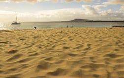 在兰萨罗特岛,加那利群岛群岛的Papagayo海滩 免版税库存照片
