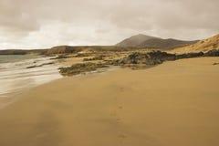 在兰萨罗特岛,加那利群岛群岛的Papagayo海滩 免版税库存图片
