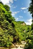 在关岛峡谷使有大岩石的山河环境美化在岸 免版税图库摄影