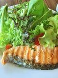 在关闭的新鲜的烤三文鱼沙拉版本 图库摄影