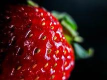 在关闭的草莓 库存照片