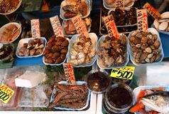 在其中一条另外海鲜显示的许多鱼中在东京存放围拢Tsukiji市场 免版税图库摄影
