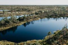 在其他湖之间的大沼泽湖在夏天 Kemeru拉脱维亚 免版税库存图片
