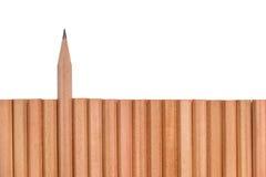 在其他铅笔外面的锋利的铅笔立场 库存图片