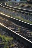 在具体睡眠者(三条弯曲的火车线)的路轨在晚上阳光下 库存图片