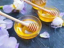 在具体背景春天的新鲜的蜂蜜虹膜花 免版税库存图片