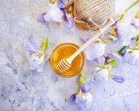 在具体背景的新鲜的蜂蜜虹膜花 库存图片