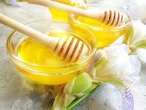 在具体背景的新鲜的蜂蜜虹膜花 免版税图库摄影