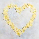 在具体背景的美好的奶油色淡色玫瑰花瓣心形的框架 新娘概念礼服婚姻纵向的台阶 顶视图,平的位置 复制 库存照片