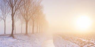 在典型的开拓地风景的日出在荷兰 图库摄影